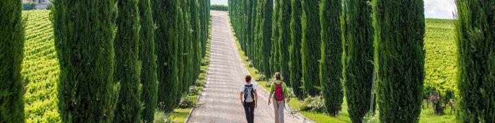 Italy: Tuscany & Umbria 2