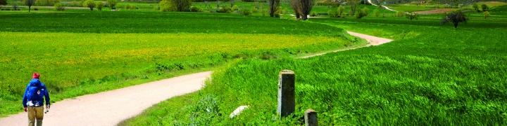 Spain: Classic Camino de Santiago 2