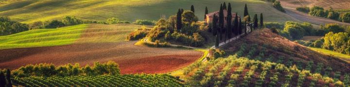 Italy: Umbria & Assisi 1