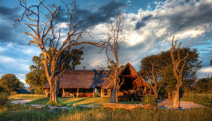 Bomani tented lodge exterior surrounded by trees