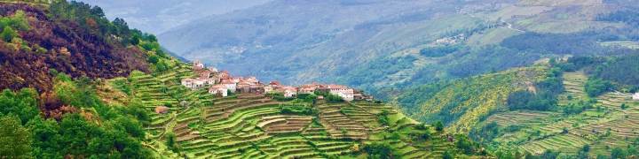 Pathways Of Portugal: Walking The Douro Valley 3
