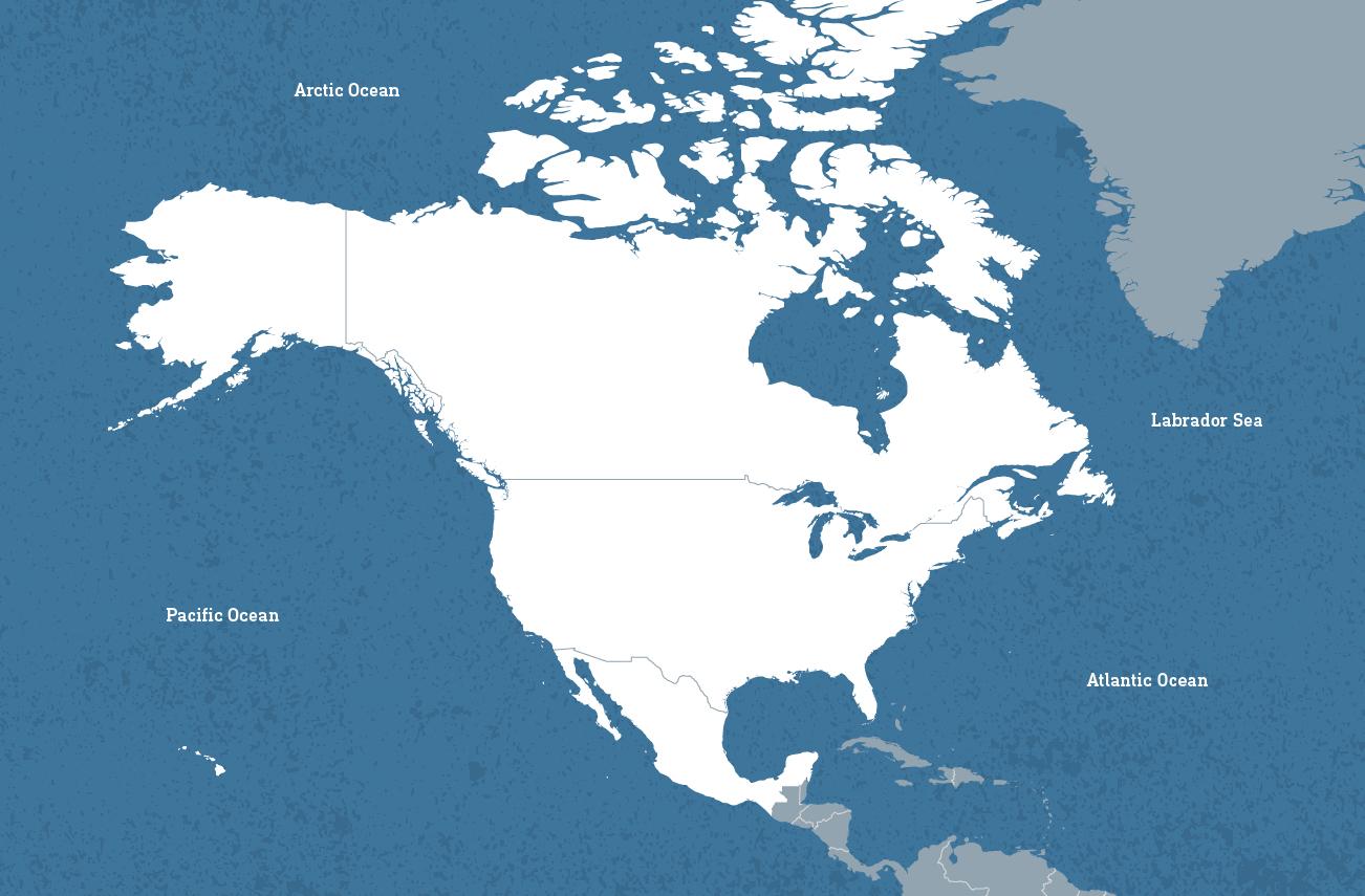 North America 1
