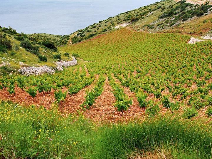 croatia-blog-2