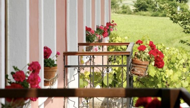 hotel balcony with flower pots