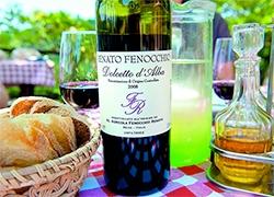 italy_piedmont_wine