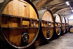 piedmont-wine-casks