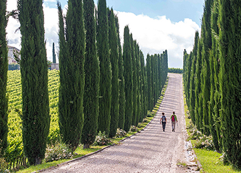 First Trip Italy - Tuscany & Umbria