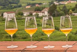 spanish_wines