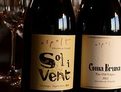 spain - worlds best wines