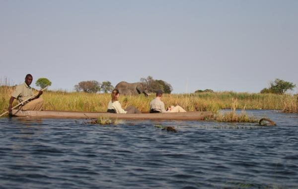 Botswana & Zambia Safari: Victoria Falls to the Okavango Delta