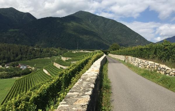 Italy: The Dolomites