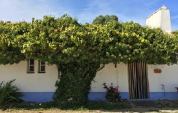 Portugal: Sintra, Óbidos & the Coast